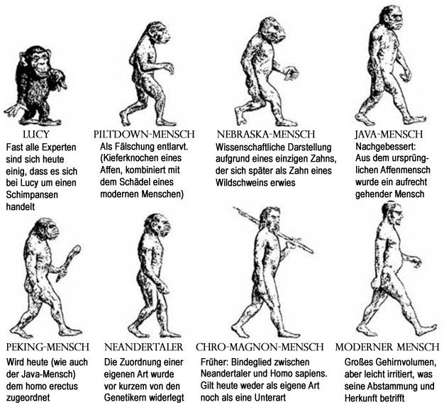 Stammbaum der gescheiterten Evolution